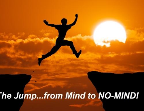 OSHO No-Mind Meditation Group – COMPLETED